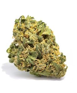 buy electric lemon g strain