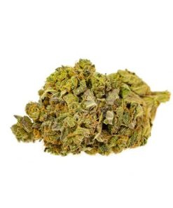 buy green haze strain online
