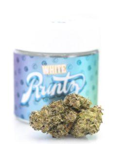 buy white runtz online